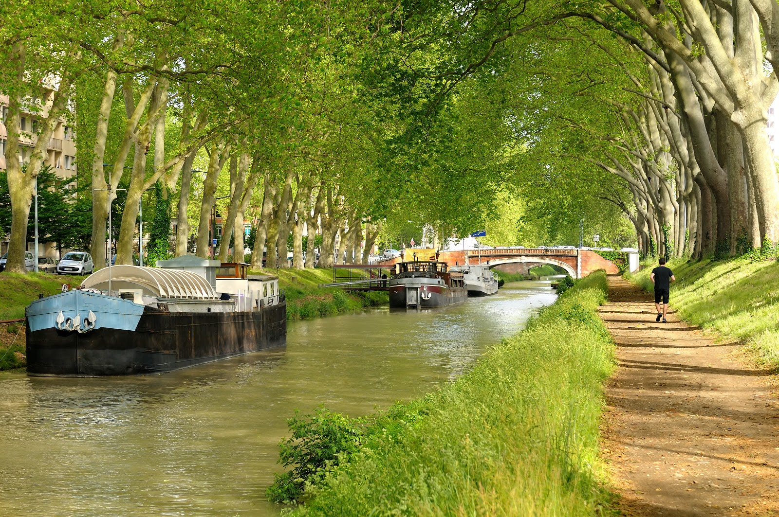 What to Do in Toulouse, France