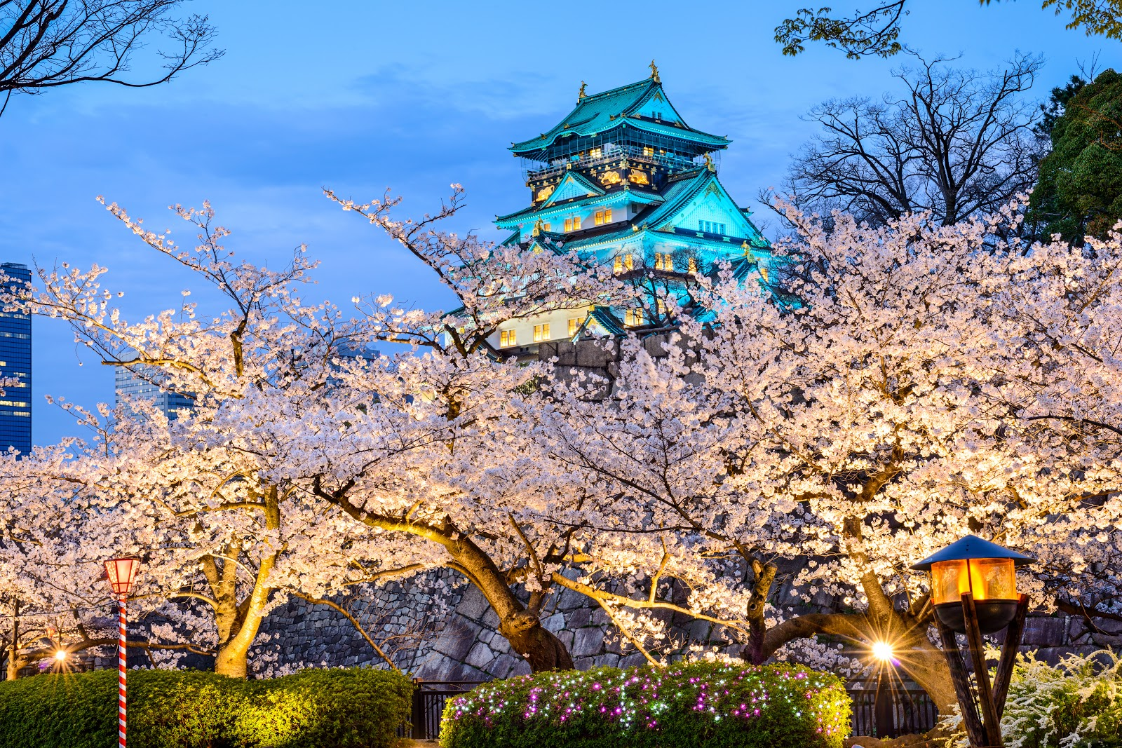 Explore: Discover Osaka like a Local
